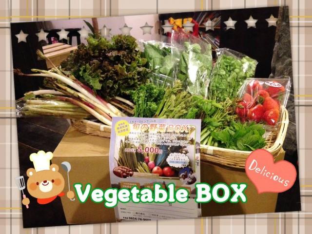 飯南町も暖かい日が続き山菜のシーズン到来ですょ♬*゜